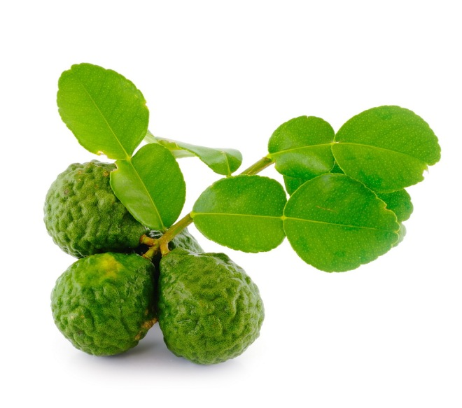 Kaffir lime with leaves